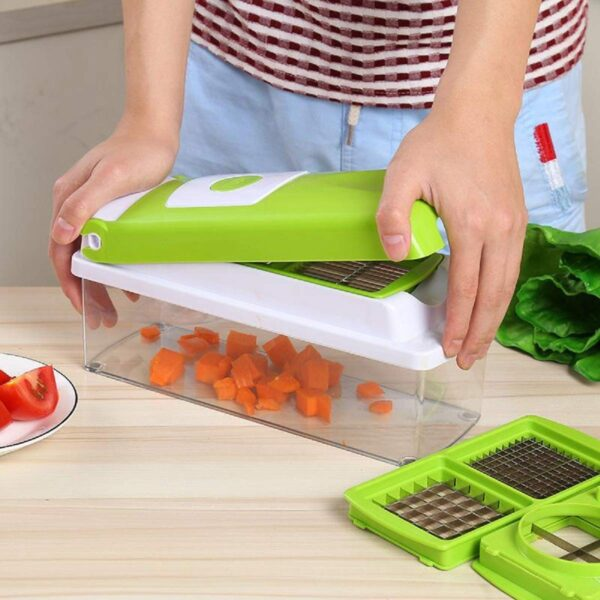 2203 Plastic Big 16 in 1 Dicer with Cutter with easy Push and pull Button - Bulkysellers.com